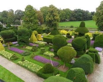 the-art-of-topiary-levens-hall